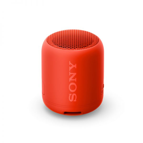 Speakers (Portable)